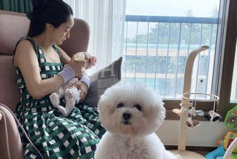 """서효림, 딸 안고 세젤예 육아맘 일상 """"여신미모 여전해"""" [리포트:컷]"""