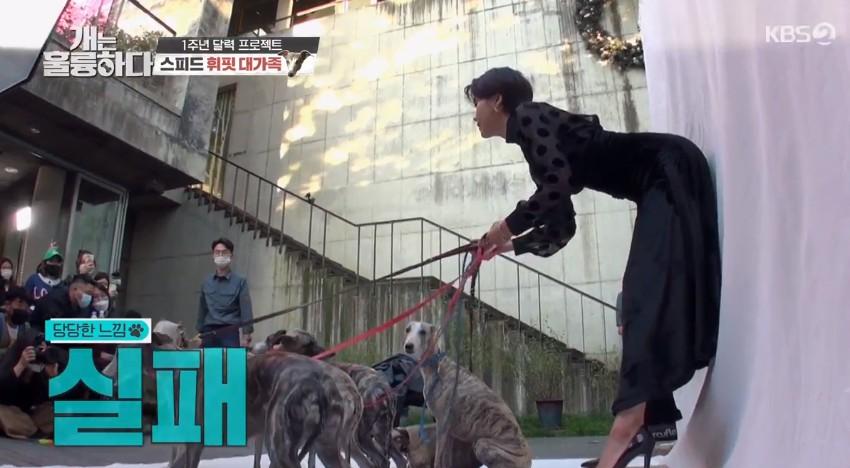 '개훌륭' 조이→김우석→뉴이스트 총출동... 1주년 달력 프로젝트 대성공[종합]