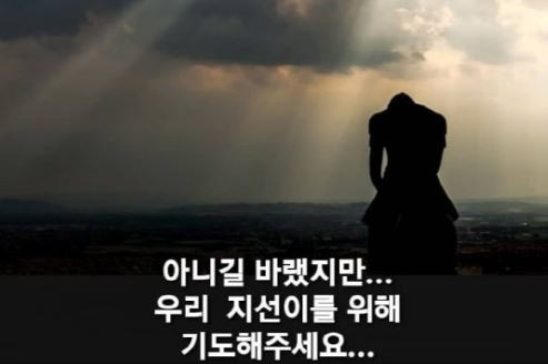 """""""지선아!""""…박지선 비보에 동료들 '망연자실'"""