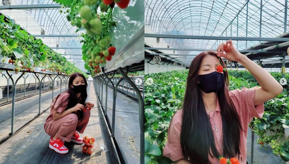 이시영, 딸기밭에서 뽐낸 과즙미 '매일이 리즈 갱신' [리포트:컷]