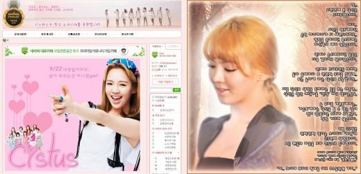 """소녀시대 효연 생일, 팬들 '신문광고' 선물…""""효탄절엔 기부를"""""""